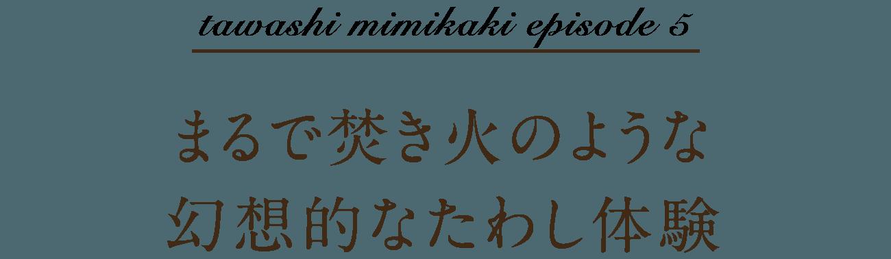 tawashi mimikaki episode 5 まるで焚き火のような幻想的なたわし体験