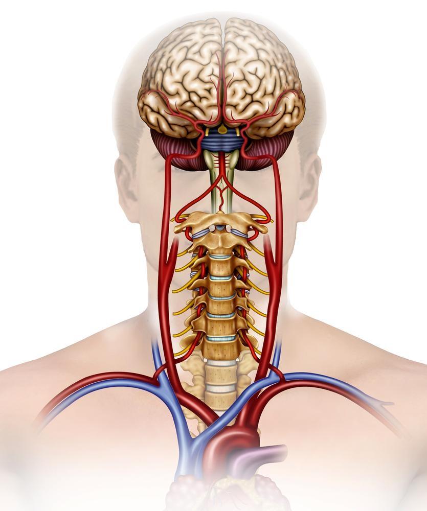 《医師監修》【天気痛で発生する頭痛対策】自律神経を整える快適睡眠術とは?