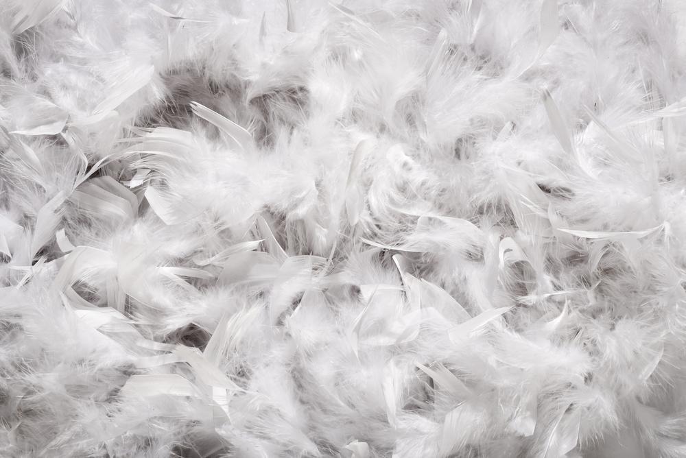 【失敗しない羽毛布団の選び方】重要なチェックポイントは3つ!