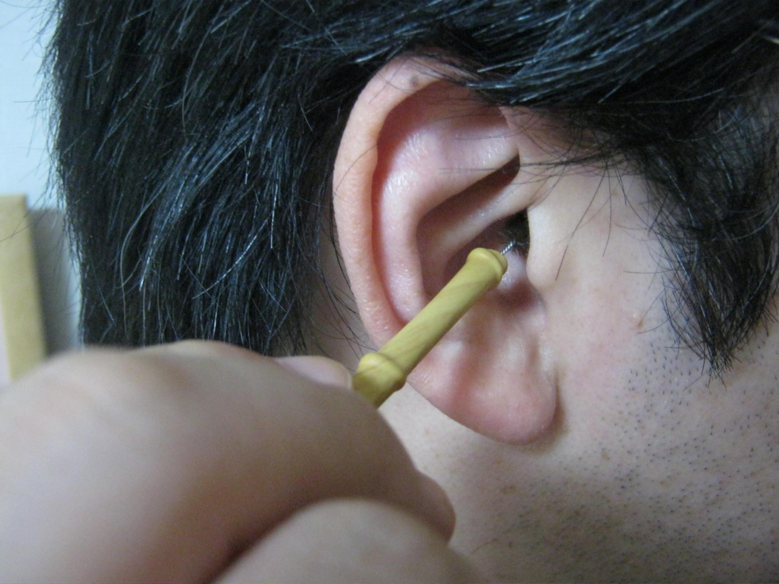 【耳かき用たわしレビュー】3カ月間の使用で心身に出た変化は?口コミも再検証